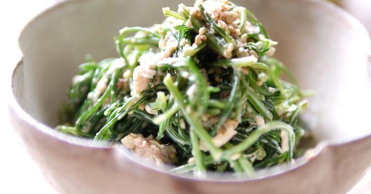 おかひじきとツナのオイマヨ和え by けんくんのママ [クックパッド] 簡単おいしいみんなのレシピが241万品