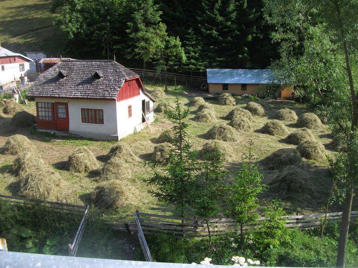 Prin Romania și nu numai/Through Romania and not only: Revenirea la munte