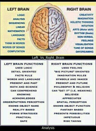 Left side brain vs right side brain