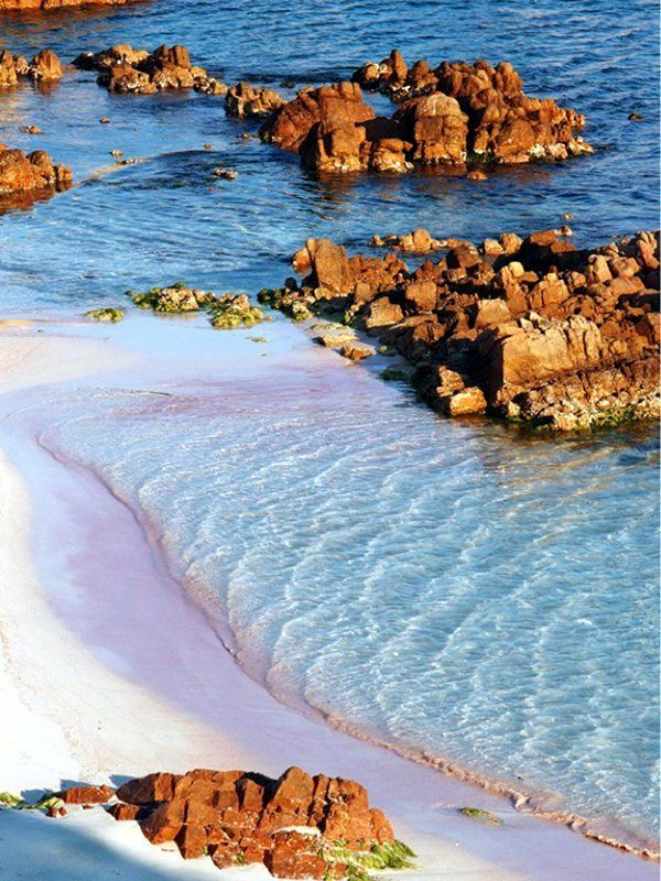 Budelli island's Spiaggia Rosa or Pink Beach, located in Sardinia's magical National Park of La Maddalena Archipelago, where crystal seas bathe wind-sculpted granite islets in otherworldly colours.