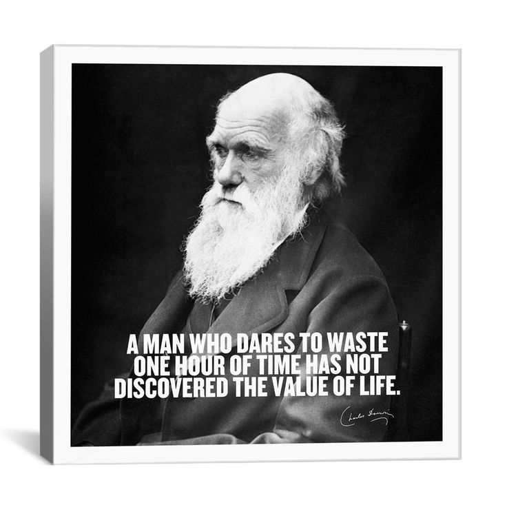 Darwin Quotes: 17 Best Darwin Quotes On Pinterest
