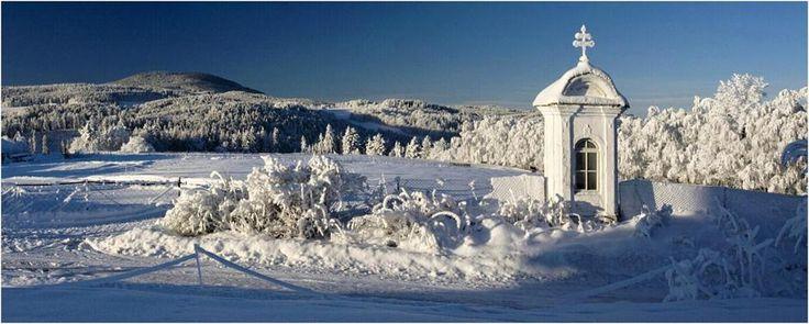 Boubín 1362 m od Škareze, Šumava
