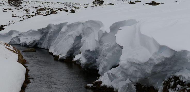 Wall of ice, www.australianphotos.com.au