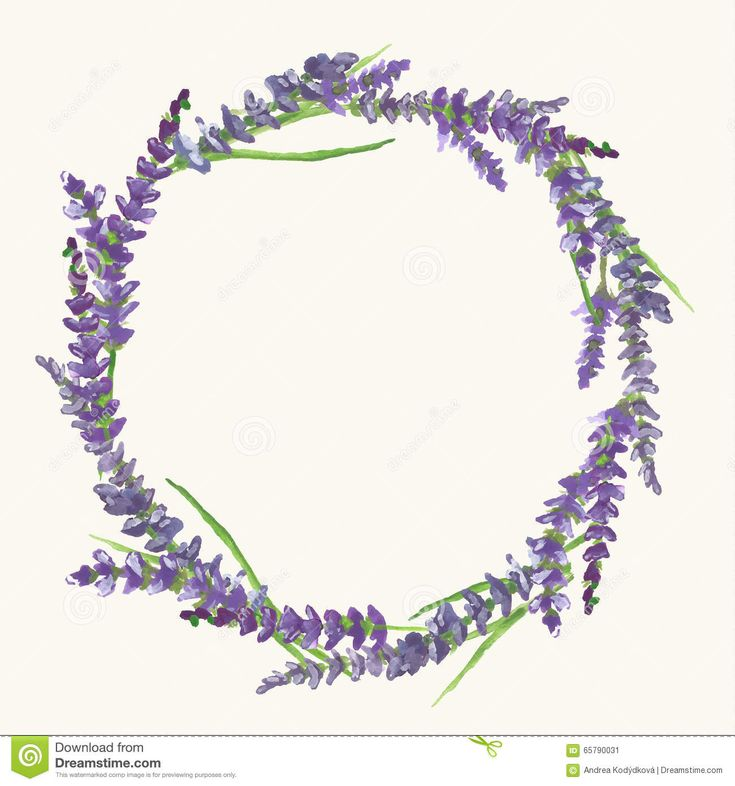 lavender wreath watercolor painting illustration stock