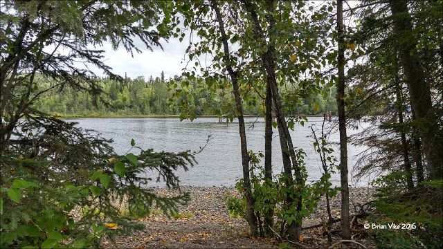 Red Bluff Provincial Park Babine Lake Granisle. Photos taken on August 28, 2016 near Granisle, BC. Travel Houston, British Columbia with Brian Vike.