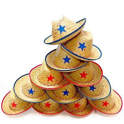 Dozen Straw Cowboy Hats for Kids - Makes Great Birthday Party Hats for Boys a...