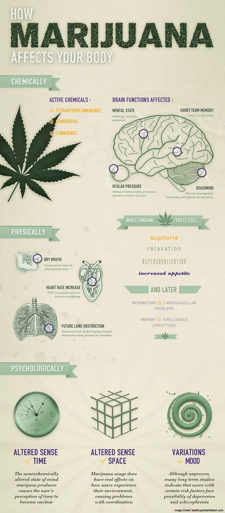 the effects of medical marijuana fina This complete guide to the effects of recreational and medical marijuana explores how marijuana makes you feel, how it interacts with the body, and any side effects.