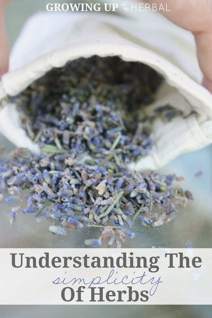 Understanding The Simplicity Of Herbs | GrowingUpHerbal.com
