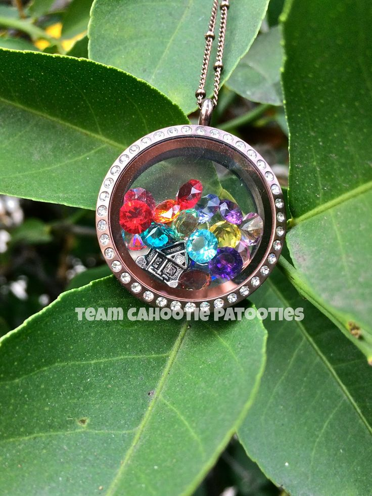 Disney's UP inspired Origami Owl Living Locket! Contact KAYLI CRAIG to purchase! www.fb.com/OrigamiOwlKayliCraigIndependentDesigner