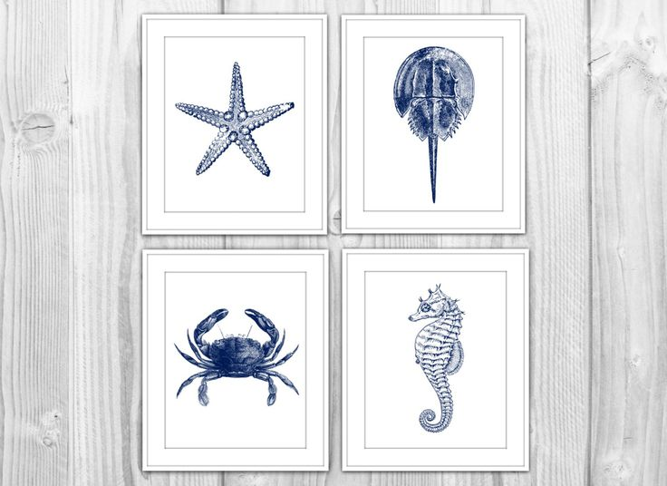 Artwork For Master Bed Bath Navy Nautical Set Of 4 Art Prints Navy Blue White By Bysamantha