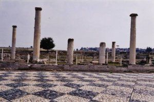 Δημιουργία - Επικοινωνία: Αρχαιολογία:   Αρχαιολογικός χώρος ανακτόρων Πέλλα...