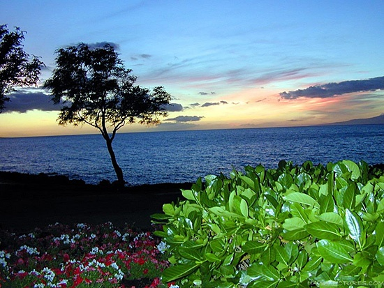 Maui Sunset Picture - Photos of Hawaii Pictures