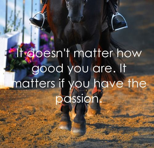 You can do all the jumps, leg yields, or horse shows in the world. But none of this matters if you don't have passion. Passion for the sport and for the horse.