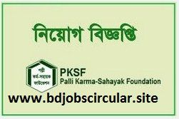 PKSF Job Circular 2017 has been published . Palli Karma Sahayak Foundation (PKSF) will offer various types job title for the position of Assistant General Manager (Audit 01) , Assistant Manager (Audit 05) and Assistant Manager (09) for the year 2017.