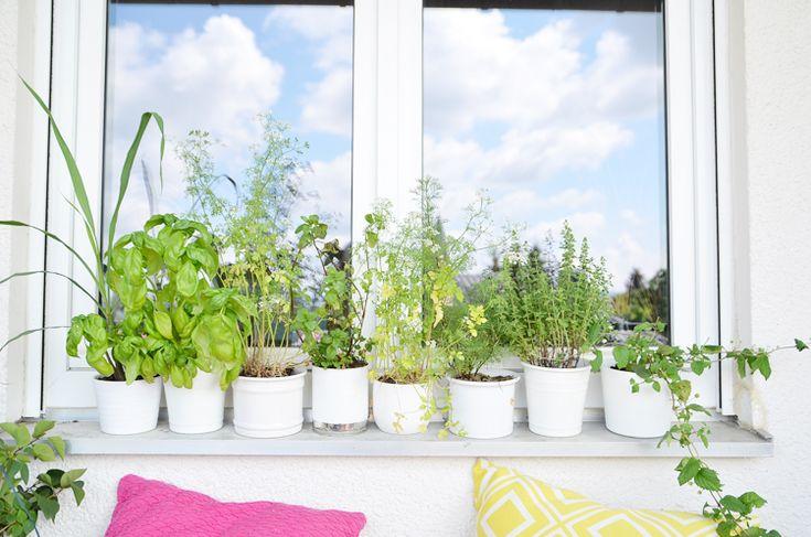 75 besten balkon ideen bilder auf pinterest balkon ideen - Obstkisten gestalten ...