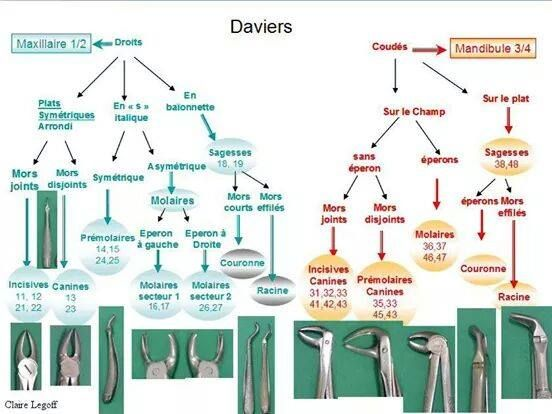 Daviers et extraction dentaire