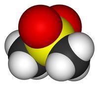 MSM - Organischer Schwefel - Entgiftung des Körpers bei chronischen Leiden