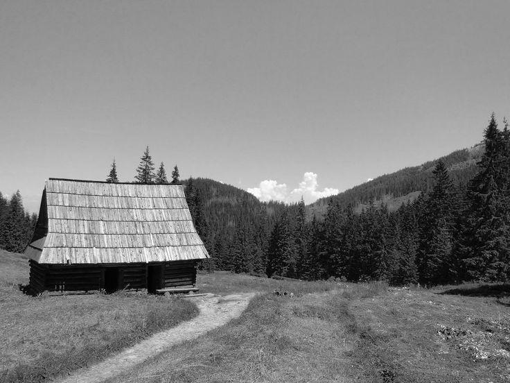 Dolina Olczyska  Tatry