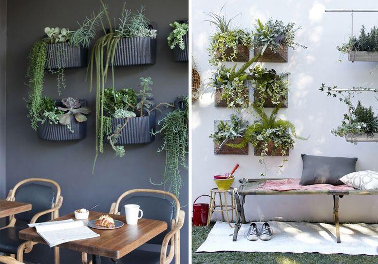 Oltre 1000 idee su arredamento piante da interni su - Piante da parete ...