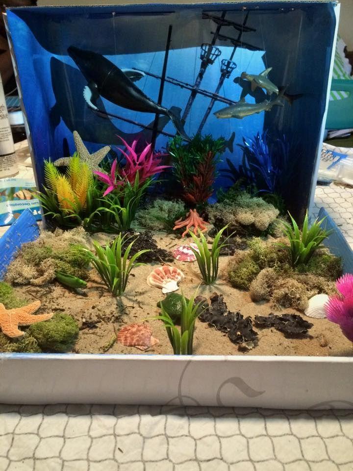 underwater diorama, ocean diorama, blue whale diorama,