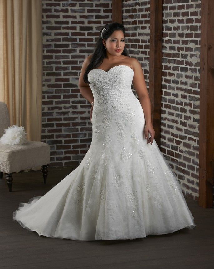 Plus Size Wedding Dresses Auckland : Dresses on plus size wedding gowns and