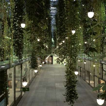 1000 images about green ceiling inspiration on pinterest