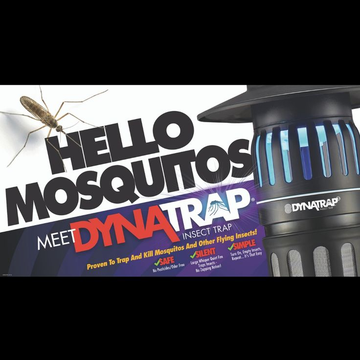 Blog DynaTrap Mosquito & Insect Trap Kill mosquitos