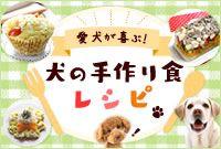 愛犬が喜ぶ!犬の手作り食レシピ