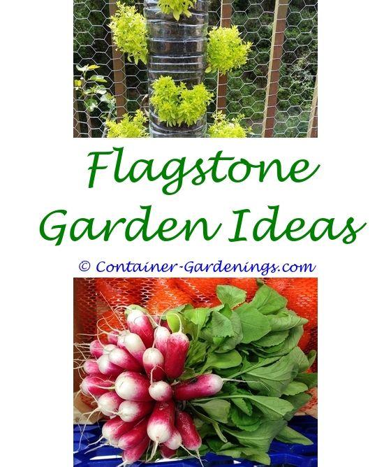 Small Backyard Landscaping Ideas Nz: Best 25+ Evening Garden Parties Ideas On Pinterest