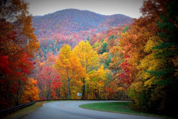 1) Tellico Plains - Cherokee National Forest