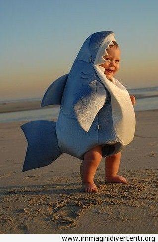 Un cucciolo di squalo