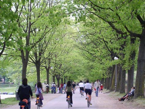 Italia. Lucca, città d'arte. Tutti insieme sulle mura in bicicletta. http://www.familygo.eu/viaggiare_con_i_bambini/toscana/lucca/lucca_viaggio_con_i_bambini.html