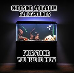 Good guide explaining the different types of aquarium backgrounds: http://www.aquarium-backgrounds.net/choosing-aquarium-backgrounds-need-know/