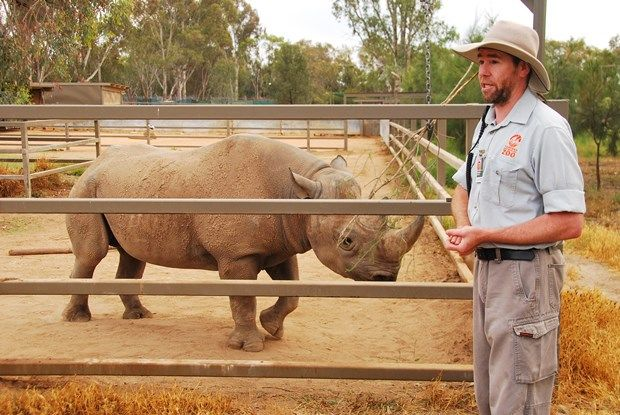 Taronga Western Plains Zoo. The endangered species breeding programs we unfortunately need.