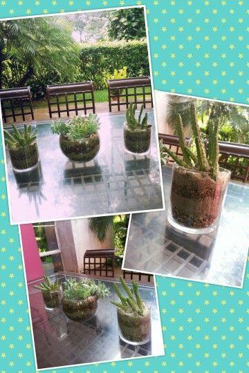 Masetas de vidrio donde puedes colocar arena y piedras que hagan el contraste para sembrar plantas que adornen la terraza del jardin.