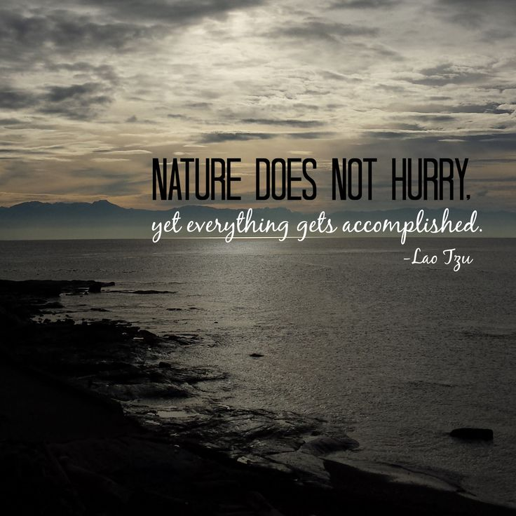 Nature Does Not Rush Yet Everything Gets Accomplished