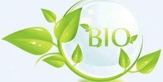 Οικολογικά φυτοφάρμακα! ~ Η τροφή μας το φάρμακό μας