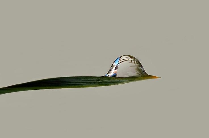 """""""Like a bird."""" by Miguel Silva, via 500px."""