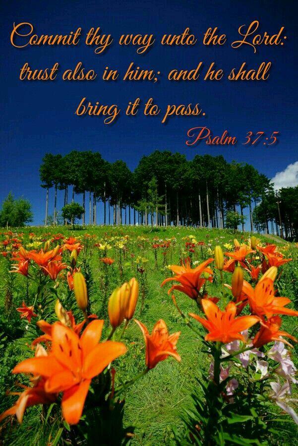 Psalm 37:5 KJV