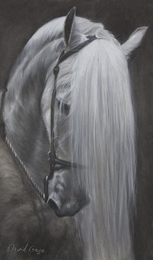 Mane Attraction Painting