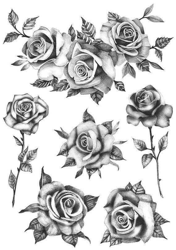 Roses Flower Set (Set of 6) – Temporary Tattoo / Realistic Roses Tattoo / Roses Tattoo / Flowers Tattoo/ Black Roses/Temporary Tattoo Floral
