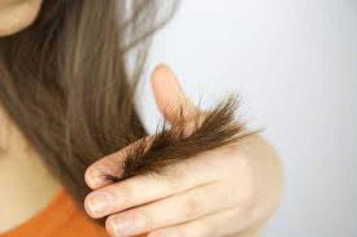 Aquilo que a vovó sempre dizia, que é preciso aparar sempre os cabelos para que fiquem mais belos, era verdade.