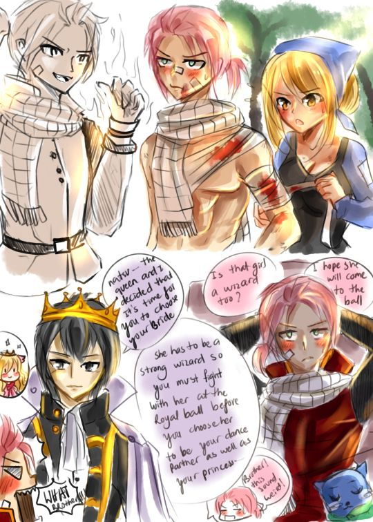 Natsu Dragneel: the Younger brother of King Zeref. He didn't like staying in the palace and act like a prince, he is a fire wizard who love going out training. He met Lucy in the forest when he almost got killed by his enemies, Lucy helped him though she was gone when he woke up. The King wanted his brother to find a bride so he invited all young singer women in the kingdom to the royal ball and she must be a wizard to fight with the prince before the prince choose her to be his partner.