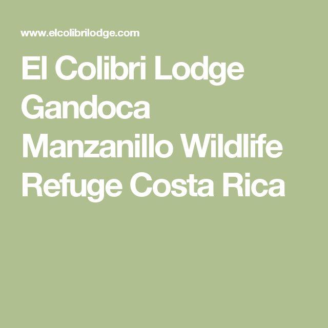 El Colibri Lodge Gandoca Manzanillo Wildlife Refuge Costa Rica