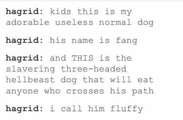 harry potter pet names