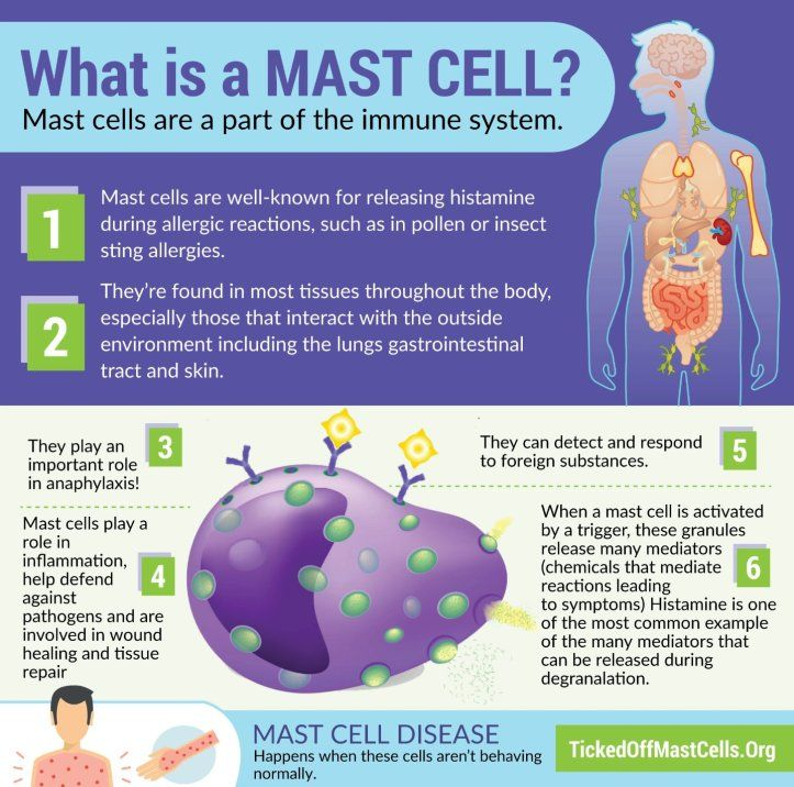 What Is Mast Cell Activation Syndrome Ticked Off Mast Cells Mast Cell Activation Syndrome Mast Cell Low Histamine Diet