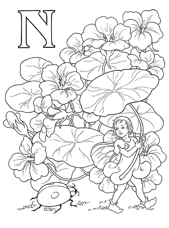 Fairy Alphabet Darcy May N