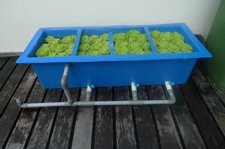 How To Make DIY Koi Pond Filter   Koi Fish Care Info