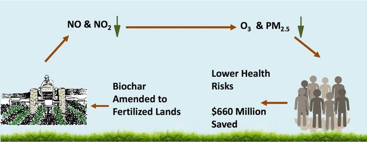 Biochar from recycled waste may both enhance crop growth and save health costs by helping clear the air of pollutants, according to Rice University researchers. Rice researchers in Earth science, economics and environmental engineering have determined that widespread use of biochar in... - #Air, #Biochar, #Clear, #TopStories, #Ways