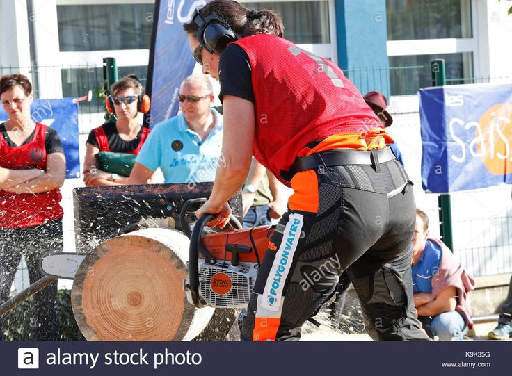 Download this stock image: Palaiseau, France. 23rd September, 2017. International Lumberjack Competition in Palaiseau. France Credit: flavia raddavero/Alamy Live News - K9K35G from Alamy's library of millions of high resolution stock photos, illustrations and vectors.